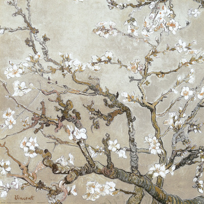 Blossoming Almond Tree in Tan - Vincent Van Gogh