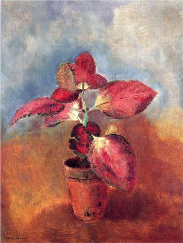 Begonia in a Pot - Odilon Redon