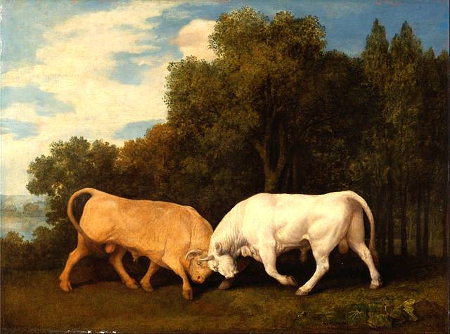 Bulls Fighting - George Stubbs