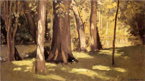 Effect of Light at Yerres - Gustave Caillebotte