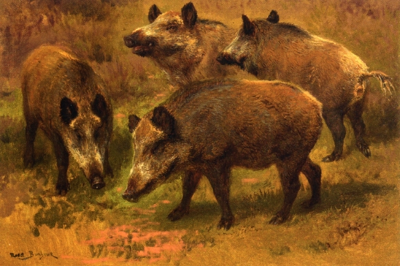 Four Boars in a Landscape - Rosa Bonheur