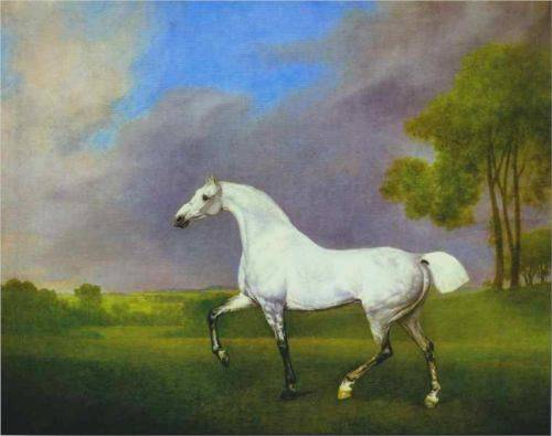 Grey Horse - George Stubbs