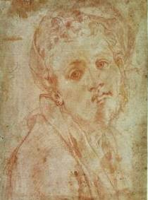The Jacopo da Pontormo Biography
