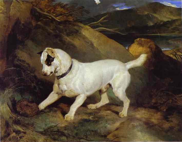 Jocko with a Hedgehog - Edwin Henry Landseer