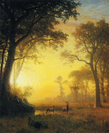 Light in the Forest - Albert Bierstadt