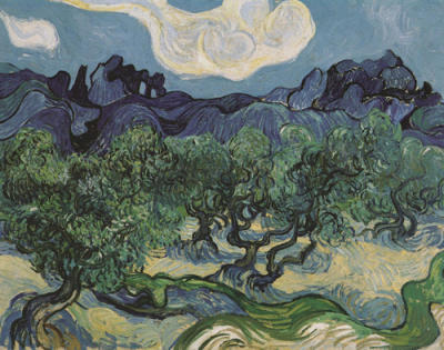 Olive Trees in Mountains - Vincent van Gogh