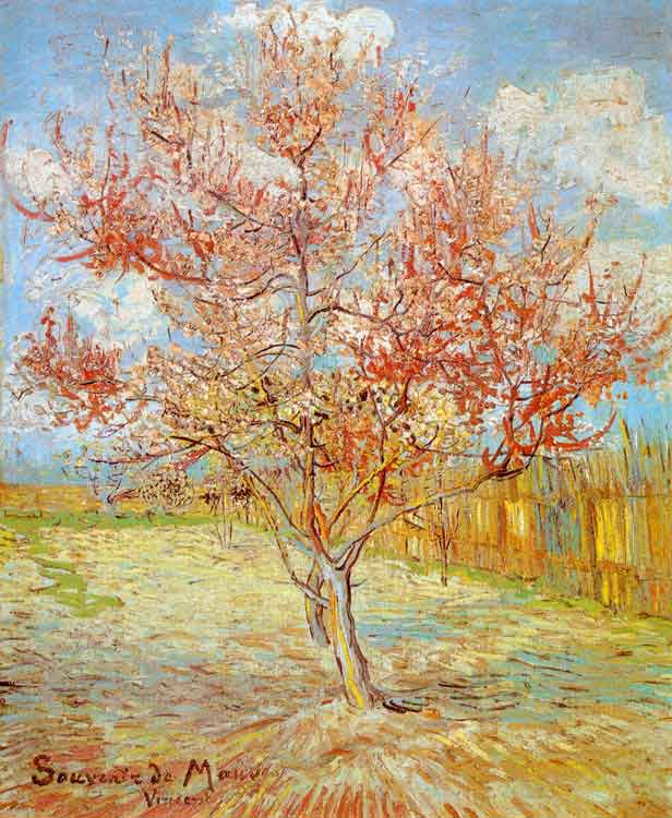 Pink Peach Tree in Blossom - Vincent van Gogh