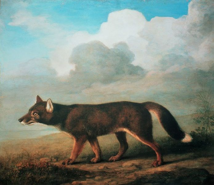 Portrait of a Large Dog - George Stubbs