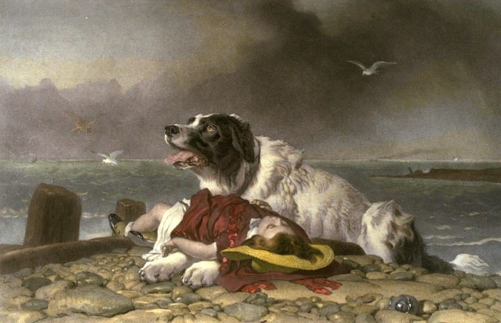 Saved - Edwin Henry Landseer
