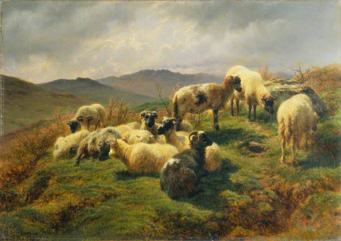 Rosa Bonheur Gallery Oil Painting Reproductions : Sheep20in20the20Highlands20Rosa20Bonheur from www.canvasreplicas.com size 680 x 480 jpeg 60kB