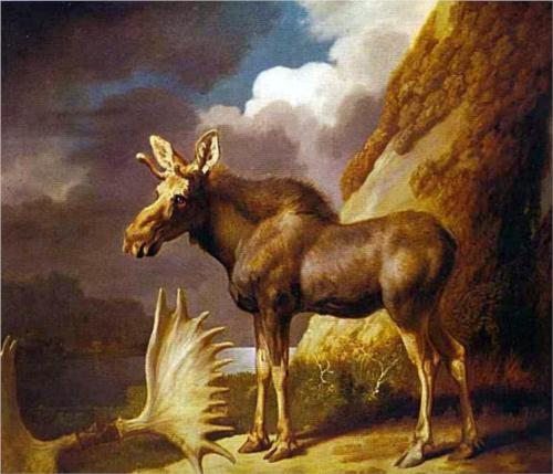 The Moose - George Stubbs