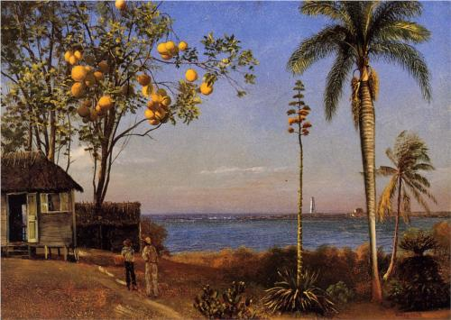 View in the Bahamas - Albert Bierstadt