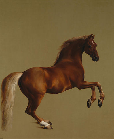 Whistlejacket - George Stubbs